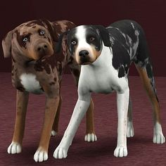 Sims 3 Pets dogs | Sims 3 downloads from all over the world Custom Content Sites!