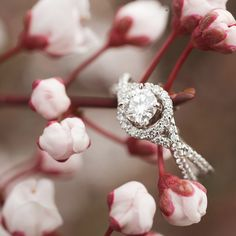 Diamonds! Diamonds! I don't mean rhinestones! But diamonds are a girls best friend! #Jewelry #Diamonds #Wedding #Rings For more information call (650) 323–1331