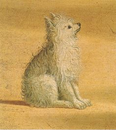 (detail)Vision of St Augustine Oil on canvas. Painted by Vittore Carpaccio (c. Funny Cats And Dogs, Cute Dogs, Renaissance Artists, Italian Renaissance, Art Articles, Malteser, Dog Lady, Italian Art, Dogs Of The World