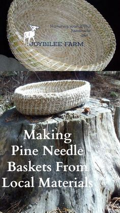 Gather local pine needles and turn them into beautiful baskets with these easy instructions. Nature Crafts, Fun Crafts, Diy And Crafts, Arts And Crafts, Camping Crafts, Pine Needle Crafts, Making Baskets, Pine Needle Baskets, Pine Needles