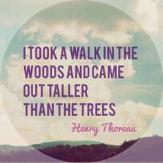 I took a walk in the woods and came out taller than the trees. Poetry Quotes, Words Quotes, Wise Words, Me Quotes, Sayings, Qoutes, Quotable Quotes, Great Quotes, Quotes To Live By