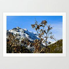 Sanábria, Spain Art Print by Elias Silva Photography - $16.00