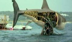 Uno de los cuatro tiburones mecánicos!