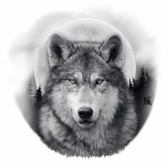 Black And Grey Wolf Tattoos Wolf Tattoos Wolf Tattoos, Animal Tattoos, Body Art Tattoos, Sleeve Tattoos, Female Tattoos, Hand Tattoos, Wolf Tattoo Design, Tattoo Designs, Forest Tattoo Sleeve