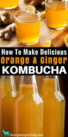 Orange and Ginger Kombucha Recipe - The Organic Goat Lady Do you make your own Kombucha? Are you always on the look out for new Kombucha flavors? This Orange and Ginger Kombucha Recipe is. Kombucha Tee, Best Kombucha, Kombucha Drink, Kombucha Flavors, Probiotic Drinks, Make Your Own Kombucha, Kombucha Brewing, Kombucha Probiotic, Kombucha Fermentation