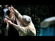 Nipper Media, and a team of film makers will be directing and producing a Documentary Film highlighting the life and inspiration of one of the most gifted Ch. Trailer 2, Movie Trailers, Respect People, Campaign, Movie Teaser, Creatures, Horses, Chiropractic, Hugs