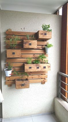 Nace en base a la necesidad de tener espacios VERDES, en los miles de balcones, departamentos y hogares que invaden las ciudades hoy en dia. Siguenos en Facebook: http://www.facebook.com/GardenStyleC/ - Gran Variedad de Plantas para el Huerto que tu quieras en tu Hogar. - Hermoso Huerto de Muro, inc... #espacioverde #Huertaenbalcon