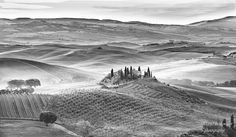 Belvedere, Tuscany  Belvedere in black and white, with a light covering of early morning mist…