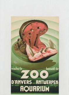 affiche ZOO Antwerpen nijlpaard