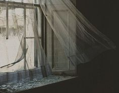 Terrence// I look out the window of the cabin.. tonight was the ball, and the only chance to escape..