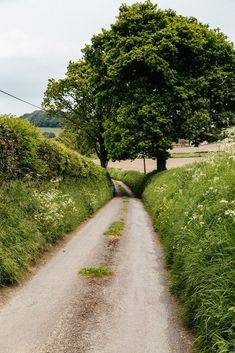 Wiltshire, England by peaflockster