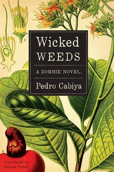 """A Caribbean zombie - smart, gentlemanly, financially independent, and a top executive at an important pharmaceutical company - becomes obsessed with finding the formula that would reverse his condition and allow him to become ""a real person."" In the process, three of his closest collaborators [...] guide the reluctant and baffled scientist through the unpredictable intersections of love, passion, empathy, and humanity."""