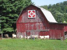 Quilt Barn - Bristol,TN