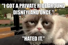 Grumpy Cat Has The Worst Day At Disneyland Ever (click through to see animated GIFS of Grumpy Cat) #GrumpyCat