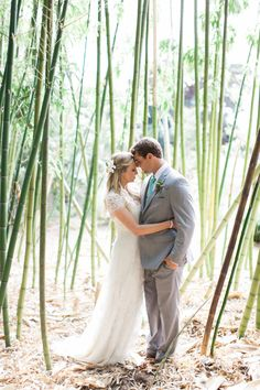 Wedding Photo. Bamboo Garden.