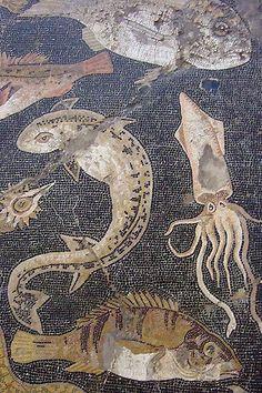 Marine Life Mosaic from House VIII Pompeii demonstrating the vermiculatum technique Roman century BCE Ancient Rome, Ancient Greece, Ancient Art, Ancient History, Roman History, Art History, Pompeii And Herculaneum, Décor Antique, Roman Art