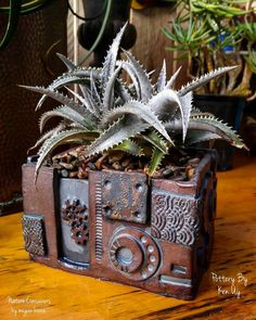 Dyckia marnier-lapostollei in a fun and funky steam-punk pot by Ken Uy.