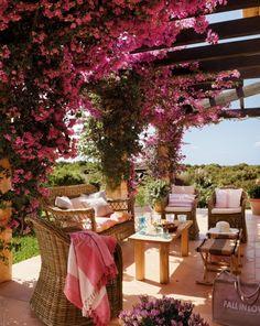 Beautiful patio and pergola..