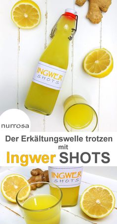 Ingwer Shots selber machen – nurrosa You are in the right place about smoothie bowl Here we offer you the most beautiful pictures about the smoothie recipes you are looking for. When you examine the Ingwer Shots selber machen –… Continue Reading → Detox Recipes, Smoothie Recipes, Smoothies, Smoothie Detox, Cleanse Detox, Smoothie Bowl, Juice Cleanse, Detox Tea, Fat Burning Detox Drinks