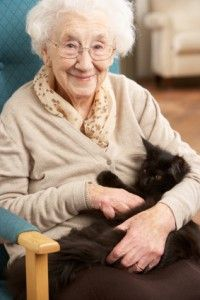 Elizabeth Shaw Pin 1 - This article discusses housing for the elderly that is specifically pet friendly. This relates to pet therapy, which can be incredibly beneficial to the elderly, especially in areas of memory. This relates to the chapter in terms of memory for the elderly. A lot of elderly people have to move to nursing homes and assisted living and having a pet friendly environment makes pet therapy more accessible which can, in turn, improve or slow the effects of dementia.