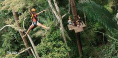 Trip Details Flying Hanuman Programme A Phuket, Zipline Adventure, 400 M, Short Trip, Hanuman, Wonderful Places, Traveling By Yourself, Tours, Activities