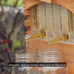 garten videos Flow Hive makes harvesting honey as simple as turning a tap. Its so much easier for the beekeeper and so much gentler on the bees. Proudly Australian made and invented. Harvesting Honey, Honey Bee Hives, Honey Bees, Bee Boxes, Bee Hives Boxes, Bee Hive Plans, Beekeeping For Beginners, Backyard Beekeeping, Hobby Farms