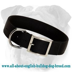 2 Ply #Nylon #Collar with Nickel Plated Buckle and D-ring $8.50 | www.all-about-english-bulldog-dog-breed.com