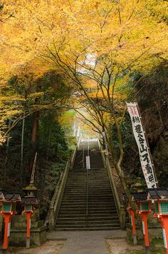 Tanukidanisan-Fudoin, Kyoto, Japan