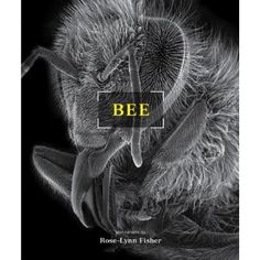 Bee. $27. Honeybees were the first creatures examined by seventeenth-century scientists whose primitive microscopes suggested a complex system of construction. Now, magnified hundreds to thousands of times with a latest generation high-resolution scanning electron microscope, honeybees appear as architectural masterpieces—an elegant fusion of form and function.