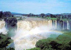 Blue Nile Falls (147 feet, 45 miles)