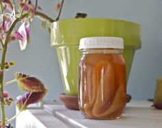 Make your own SCOBY.
