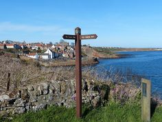 Arriving in Crail on our walk from Elie along the Fife Coastal Path. fife-coastal-path-crail