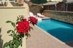 Villa Apollon is waiting for you! #Greece #sea #Rethymno #holidays #villas #sfakaki #relaxation