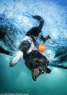 Así se vería Fleka bajo el agua...