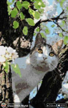 Peler Beads, Cross Stitch Animals, Cats, Diy, Cross Stitch, Dots, Animals, Embroidery, Gatos