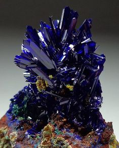 """themineralandgemassassin: """"Azurite from El Cobra Mine, Mexico. Collector's azurite crystals mostly came from Chessy in France (the oldest mine since the Morenci and Bisbee in Arizona, Tsumeb in Namibia, and Touissit in Morocco. Minerals And Gemstones, Rocks And Minerals, Beautiful Rocks, Mineral Stone, Rocks And Gems, Stones And Crystals, Gem Stones, Healing Crystals, Blue Crystals"""