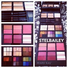 Mary Kay cosmetic palettes filled with bronzer, highlighting powder, lip liners, lipstick, blushes, and mineral eyeshadow. MK