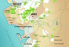 Sherry vineyards deserve more focus, says DO president Domecq | decanter.com