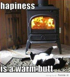 kat grappig