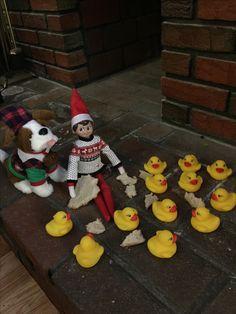 Elf feeds the ducks. Christmas Activities, Christmas Traditions, Christmas Elf, Christmas Crafts, Elf Auf Dem Regal, Awesome Elf On The Shelf Ideas, Elf Magic, Elf On The Self, Naughty Elf