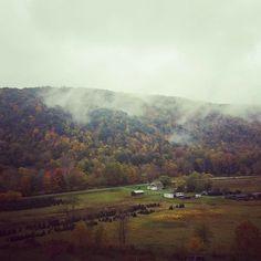 Fall in WV