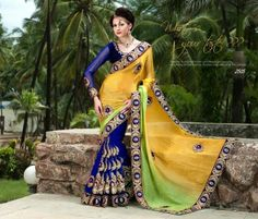 Fashionista Asian Glamorous Indian Saree's Collection 2013-2014 (7)