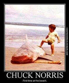 Chuck Norris At The Beach - http://controversialhumor.com/chuck-norris-at-the-beach/ #FunnyPictures, #Haha, #Humor