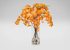 Orange Orchids in Glass Vase - Ethan Allen