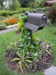 1000 images about mailboxes no bills please on Pinterest