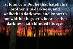 62_1JO_02_11 But he that hateth his brother is in darkness, and walketh in darkness, and knoweth not whither he goeth, because that darkness hath blinded his eyes.                                                                                            www.eBibleProductions.com