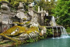Bearded man statue at the Villa Lante gardens in Bagnaia, Italy. #italy #bagnaia #travel