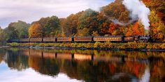 Here's a must-read article from Country Living:  8 Fall Foliage Train Rides You Need to Take This Season