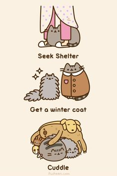 What to do when it's cold. Advice from Pusheen.