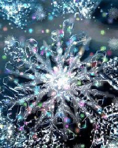 weza:  Beautiful winter ❤❀❤